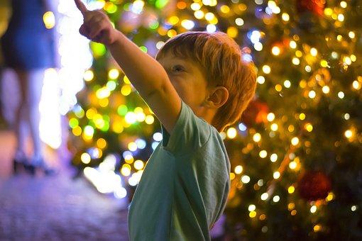 Christmas, Ice Cream, Lights, Light