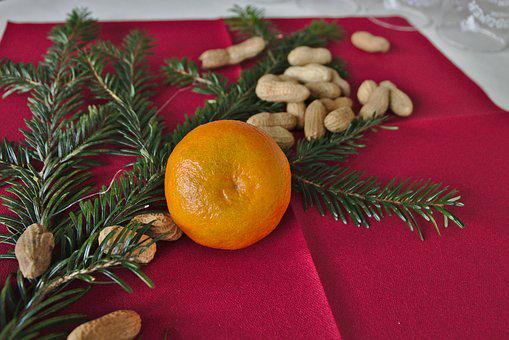 Christmas, Mandarin, Decoration, Peanuts, Deco, Nuts