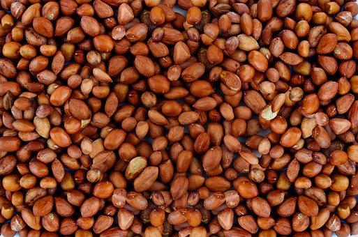 Peanut, Nuts, Food, Delicious, Snack, Eat, Healthy