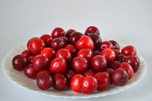 Plum, Fruits, Sweet, Food, Ripe, Vitamins, Fresh, Tasty