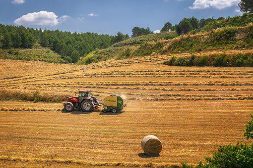 Harvest, Tractor, Agriculture, Field, Fieldwork, Summer
