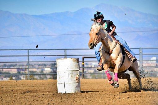 Horse, Barrel Race, Rider, Equestrian, Quarter Horse
