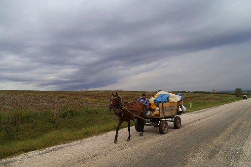 Gypsy, Turkey, Horse Carts, Landscape, Melancholy
