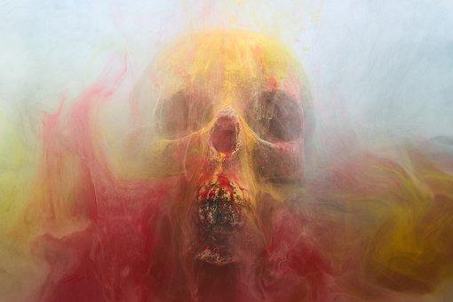 Skull, Dry Head, Skeleton, Dead, Death, Bone, Dark