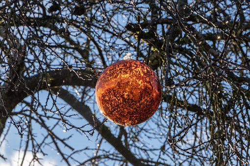 Christmas Bauble, Winter, Branches, Tree, Decoration