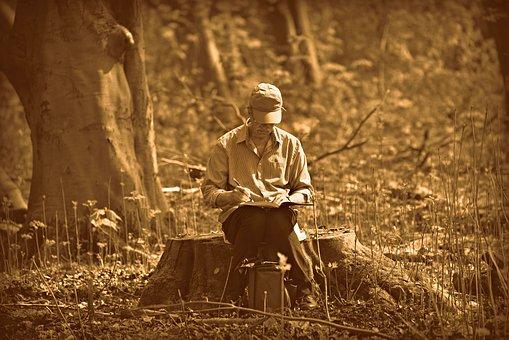 Man, Person, Artist, Drawing, Sitting, Tree Stump