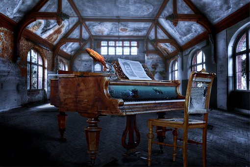 Piano, Wing, Aquarium, Fish, Lost Place, Funny