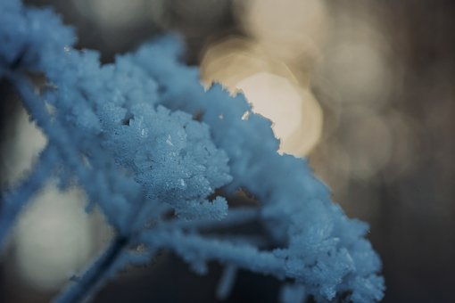 Cold, Winter, Frost, Ice, Frozen, Wintry, Eiskristalle