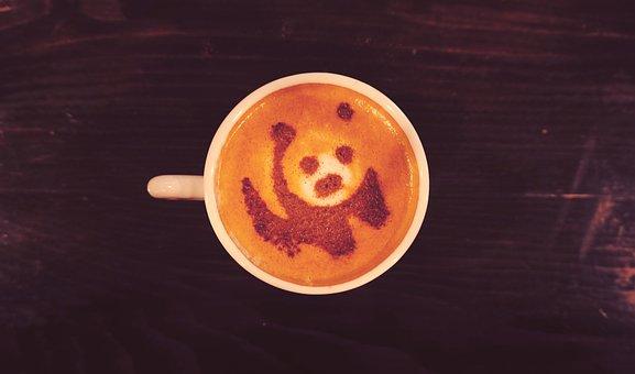 Panda Bear, Coffee, Panda, Bears, Cub, Bear, Cappuccino