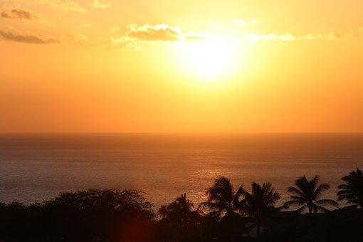 Hawaii, Palm, Sunset, Beach, Tropical, Island, Sky