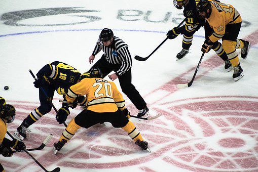 Hockey, Ice Hockey, Player, Players, Sport, Sports