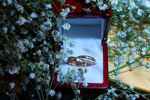 Ring, Wedding, Rings, Love, Marriage, Novel, To Marry
