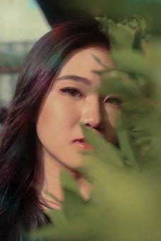 Asian, Girl, Woman, Model, Portrait, Female