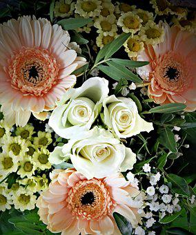 Flowers, Bouquet, Gerbera, Salmon, White Roses