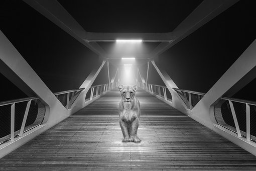 Lion, Bridge, Architecture, City, Landmark, Suspension