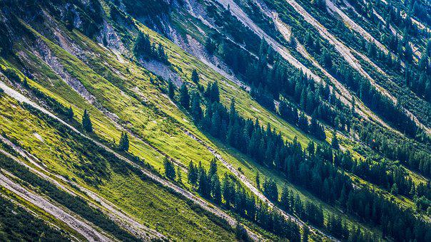 Nature, Mountains, Forest, Landscape, Mountainside