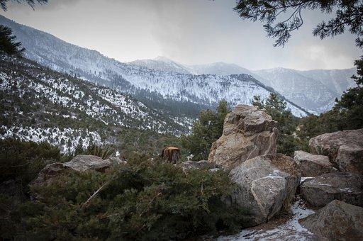 Winter, Christmas, Vegas, Las Vegas, Snow, Cold