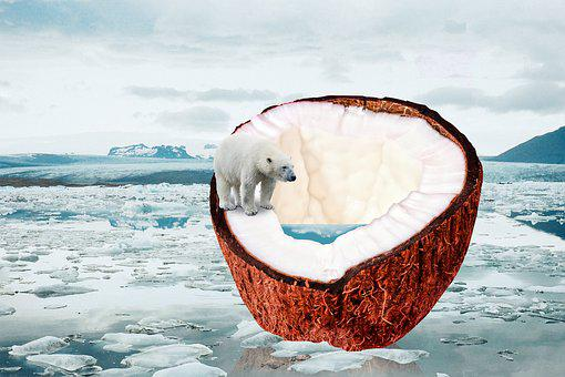 Climate Change, Global Warming, Ice Melt, Coconut