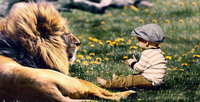 Play, Child, Lion, Fun, Boy, Son, Kid, Happy, Baby