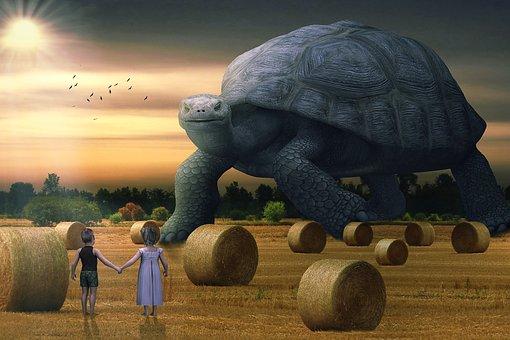 Manipulation, Landscape, Hay Bales, Turtle, Children