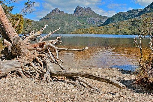 Australia, Tasmania, Nature, Water, Landscape, Summer