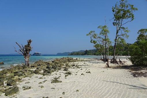 Beach, Sea, Elephant Beach, Havelock Islands, Andamans