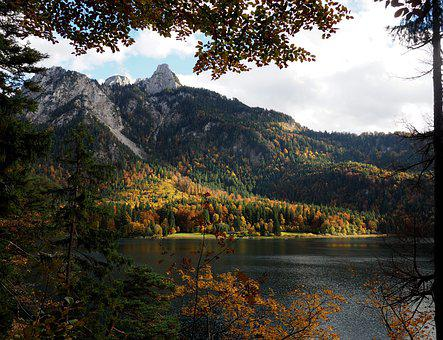 Mountain, Lake, Mountains, Forest, Fall, Colors, Rest