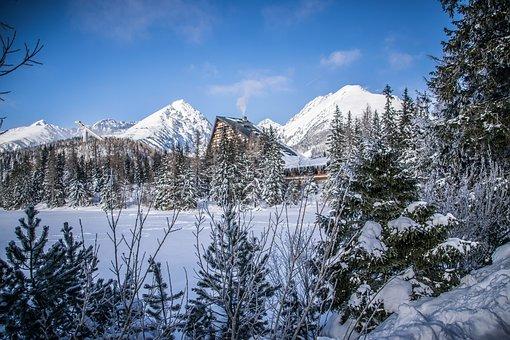 Winter, Lake, Mountains, Snow, Ice, Nature, Trees