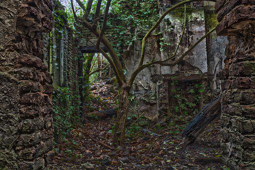 Lost Places, House, Abandoned, Ruin, Old, Decay