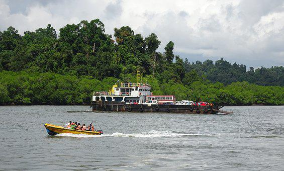 Mangroves, Forest, Lush, Greenery, Creek, Boat, Barge