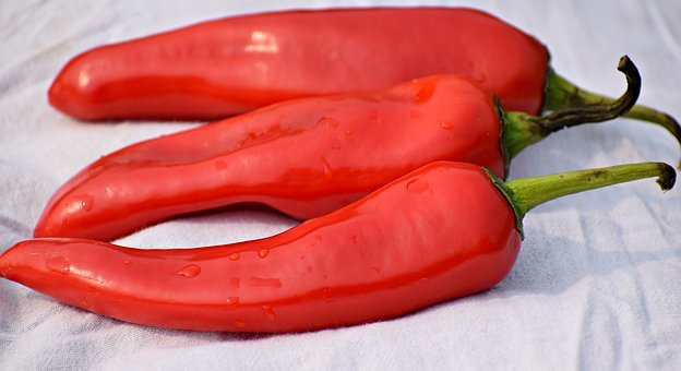Food, Chilli, Organic, Chili, Pepper, Red, Vegetables