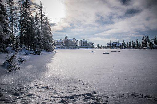 Winter, Lake, Snow, Ice, Nature, Trees, Landscape