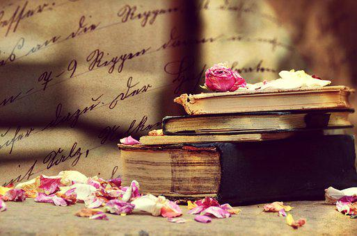 Book, Rose Petals, Artistic, Artfully, Vote, Fantasy