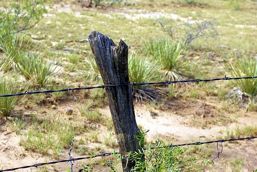 Nm Barbed Wire Fence, Barbed, Wire, Fence, Metal