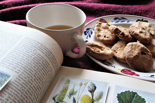 Read, Botany, Pictures, Have Breakfast, Cookies, Baking