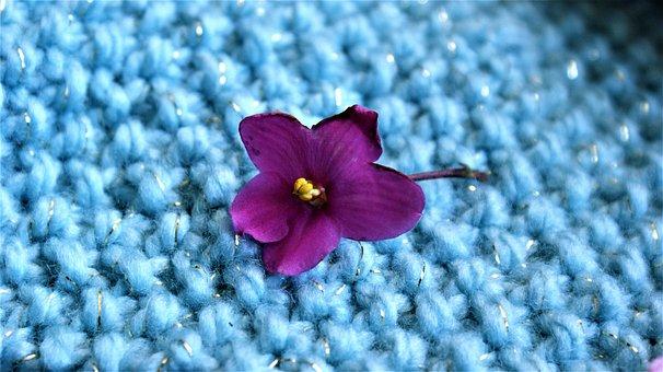 Flower, Silver Thread, Knitted Fabric, Motive, Yarn