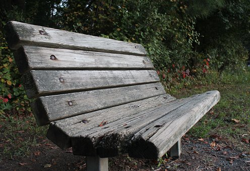 Bench, Relax, Wood, Nature, Park, Peaceful