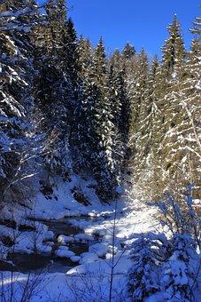 Torrent, Mountain Stream, Winter, Austria, Tyrol