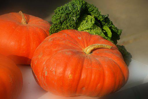 Pumpkin, Cabbage, Vegetables, Food, Costs, Harvest