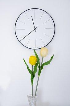 Tulip, Yellow, Flower, Clock, Minimum, Room