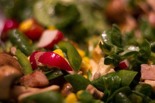 Salad, Fresh, Food, Healthy, Vegetables, Eat, Bio