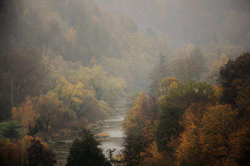 Fog, Autumn, Haze, Mood, Atmosphere, Trees, Forests