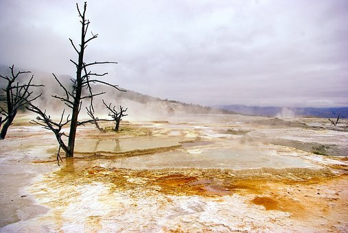 Yellowstone's Canary Spring, Mammoth, Hot, Spring