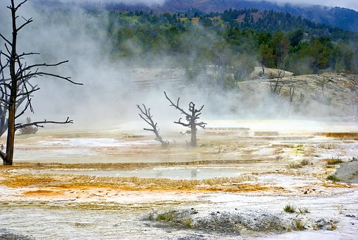 Mist Over Canary Spring, Mammoth, Hot, Spring, Terrace