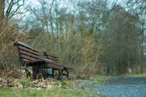 Park Bench, Away, Nature, Bank, Landscape, Rest, Mood
