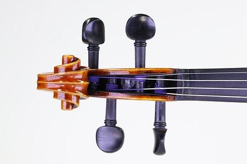 Music, Violin, Instrument, Musician