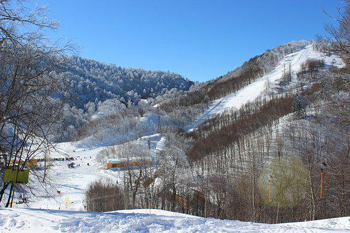 Kartepe, Winter Sports, Cold, Sports, Mountains, Nature