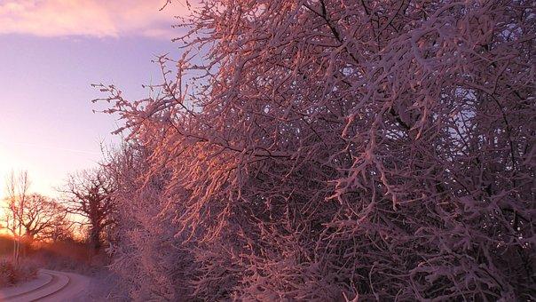 Wintry, Winter, Snow, Cold, Winter Magic