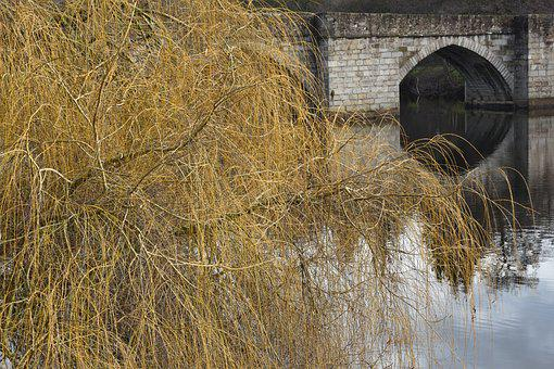 Landscape, Reflection, Tree, Willow, Bridge, Water