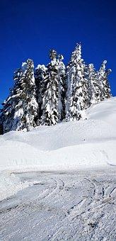 Berchtesgaden, Rosfeld Panoramic Road, Winter, Snow